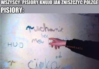 Image may contain: one or more people and meme, text that says 'WSZYSCY: PISIORY KNUJO JAK ZNISZCZYC POLZGE PISIORY: machamie Sex Ma HUJ imgflip.com mgflip'