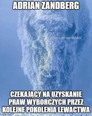 May be an image of text that says 'ADRIAN ZANDBERG com/czerwonobiali CZEKAJĄCY NA UZYSKANIE PRAW WYBORCZYCH PRZEZ KOLEJNE POKOLENIA LEWACTWA mgflp'